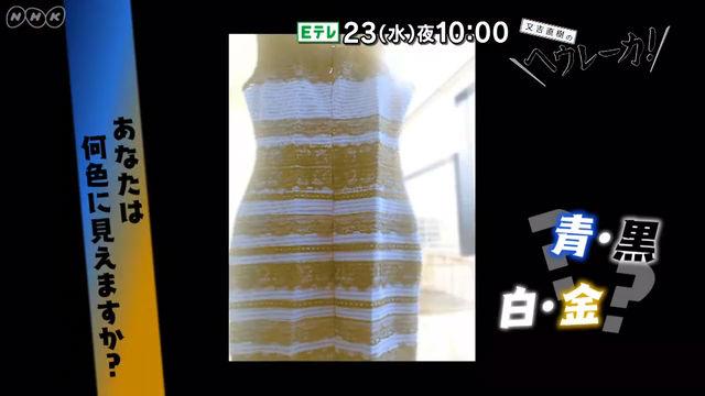 又吉直樹のヘウレーカ!「あなたは何色に見えますか?」 , NHK